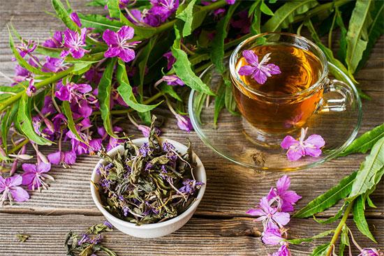 Травы для сна - иван-чай